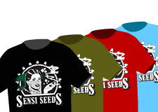 Merchandising oficial Sensi Seeds