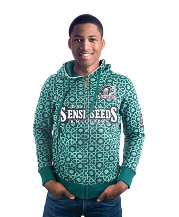 Buy original Sensi Seeds Pine Green hoody online